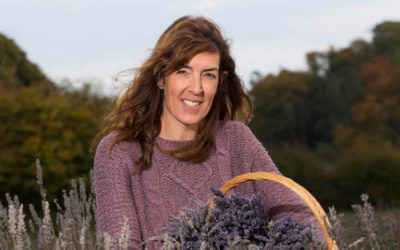 Wexford Lavender Farm – the one and only