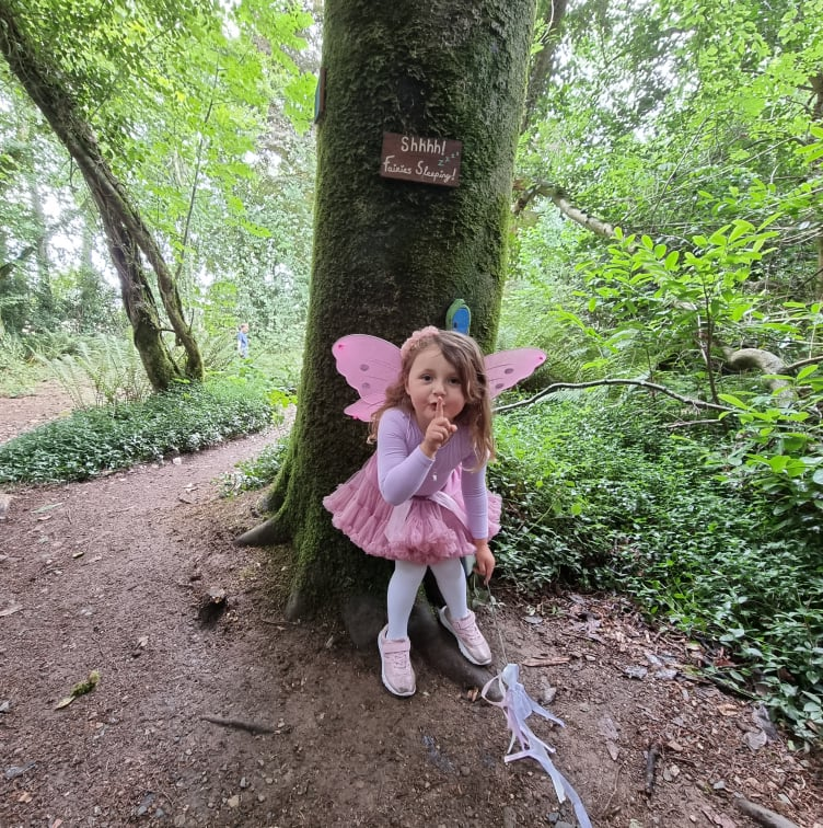 fairy hunt wells house and gardens