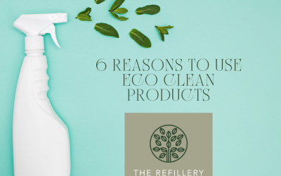 6 Reasons to start using Eco Friendly Cleaning Products